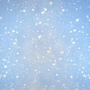 "Цветна напечатана панама Аида ""Сняг"""